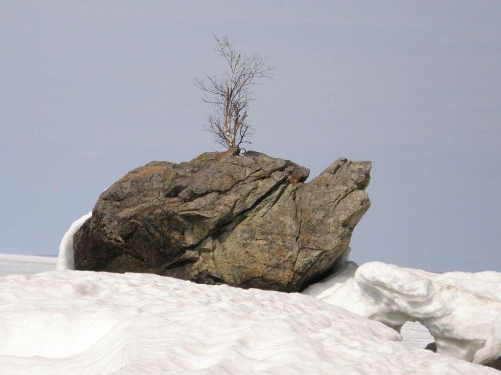 Природный памятник Черепаха - Туры на Байкал