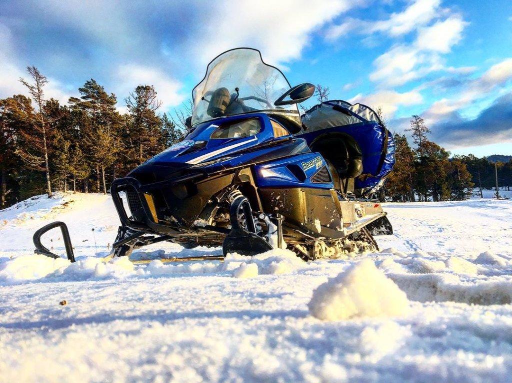 Снегоходы