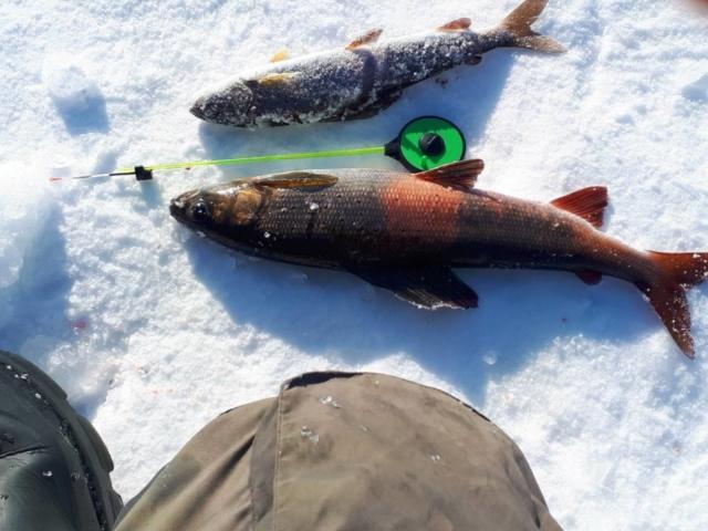Зимняя рыбалка - Туры на Байкал - БайкалМакс
